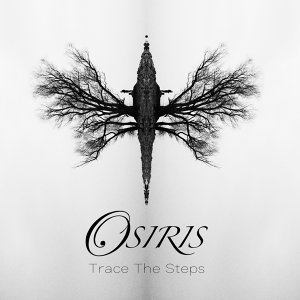 Trace the Steps