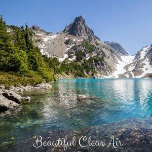 Beautiful Clean Air