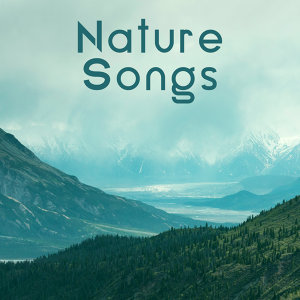 Nature Songs – Calming Waves, Stress Relief, New Age Relaxation, Peaceful Mind