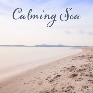 Calming Sea – Healing Music for Relaxation, Spa Music, Pure Massage, Peaceful Mind, Zen Music, Relaxation Wellness, Deep Relief, Nature Sounds