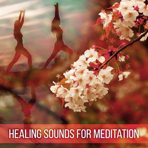 Healing Sounds for Meditation – Training Yoga, Deep Relief, Zen Music, Better Concentration, Chakra Balancing, Inner Spirit, Sounds of Yoga, Pure Mind