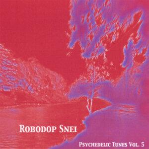 Psychedelic Tunes Volume 5