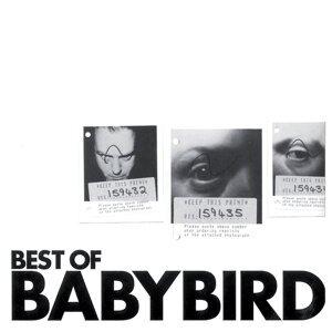Best of Babybird