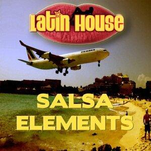 Salsa Elements