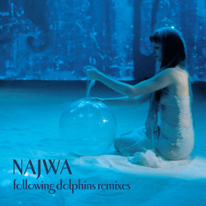 Following Dolphins Remixes