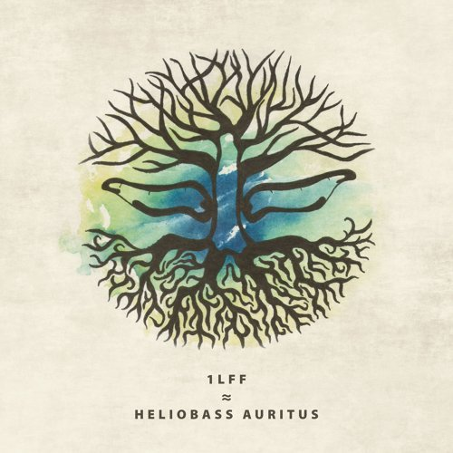 Heliobass Auritus