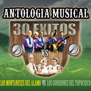 Antologia Musical 30 Exitos