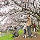 桃色の花 (momoironohana)