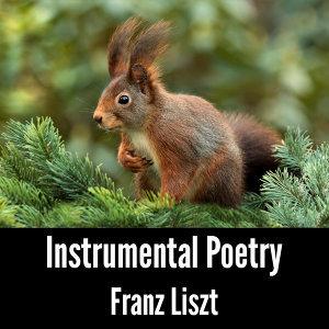 Instrumental Poetry: Franz Liszt