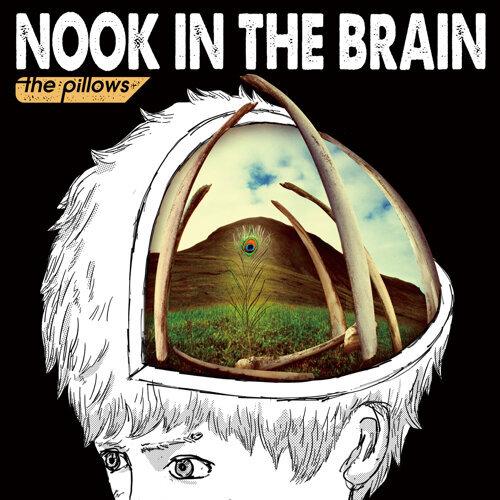 NOOK IN THE BRAIN