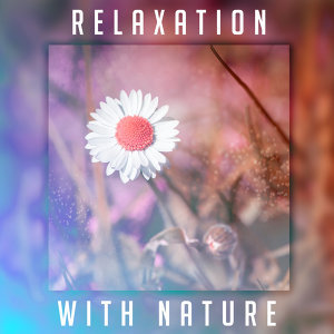 Relaxation with Nature – Relaxing Waves, Peaceful Mind, Healing Music to Calm Down, Therapy Sounds, Soothing Water, Gentle Rain, Calmness