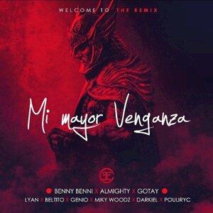 Mi Mayor Venganza - Remix