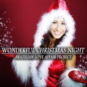 Wonderful Christmas Night