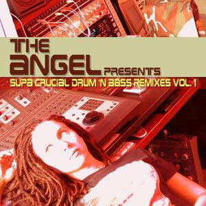 Supa Crucial Drum 'N Bass Remixes Vol. 1