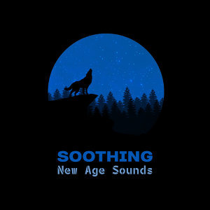 Soothing New Age Sounds – Calm Down and Sleep, Chilled Melodies for Night, Soft New Age, Relaxing Moments