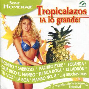 Tropicalazos ¡A Lo Grande!
