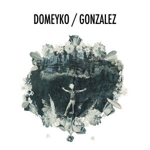 Domeyko/Gonzalez