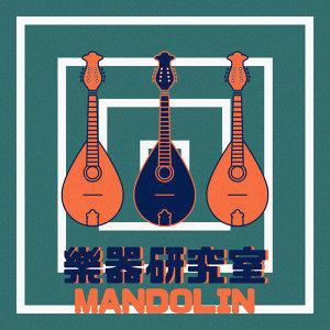 樂器研究室 : 曼陀林琴 Mandolin