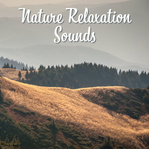 Nature Relaxation Sounds – Soothing New Age Music, Forest Waves, Calm Mind, Rest & Relax