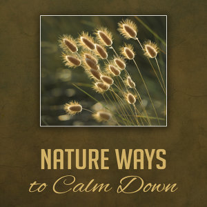 Nature Ways to Calm Down – Soft New Age Music, Peaceful Sounds, Stress Free, Beautiful Memories