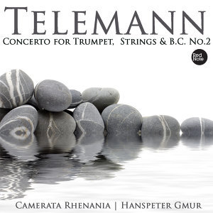 Telemann: Concerto for Trumpet, Strings & Bass Continuo No.2