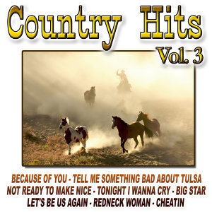Country Hits Vol.3