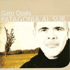 Patagonia al sur