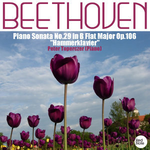 "Beethoven: Piano Sonata No.29 in B Flat Major Op.106 ""Hammerklavier"""