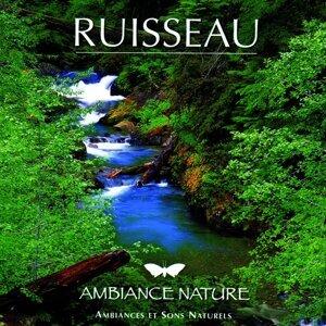 Ambiance Nature Ruisseau