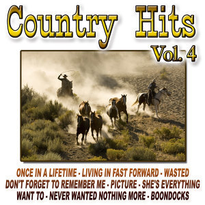 Country Hits Vol.4