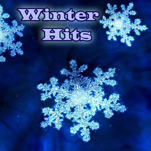 Winter Hits 2010 - Instrumentals