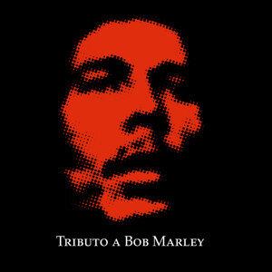 Concrete to Jungle (Bob Marley)