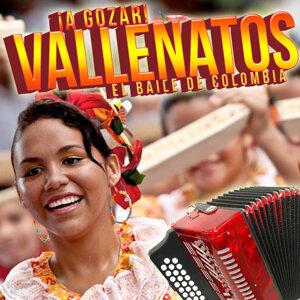 A Gozar Vallenatos! El Baile de Colombia
