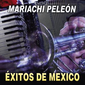 Exitos de México