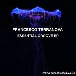 Essential Groove