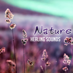 Nature Healing Sounds – Calming New Age Music, Rest with Nature Waves, Healing Therapy, Easy Listening