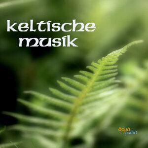 Keltische Musik, Keltische Irische Musik und Keltische Harfe