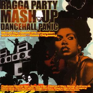 Ragga Party Mash Up