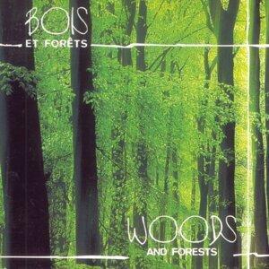 Bois et forêts - Woods and Forests