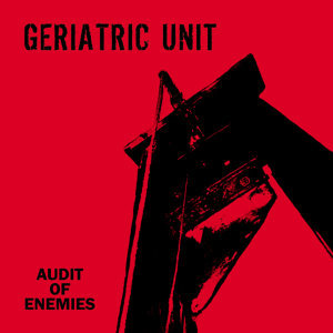 Audit Of Enemies