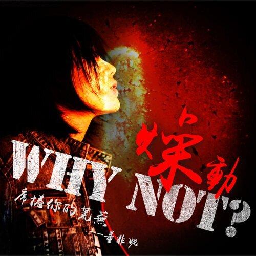 燥動 (Why Not?)