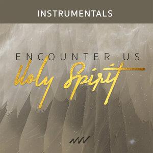 Encounter Us Holy Spirit - Instrumental