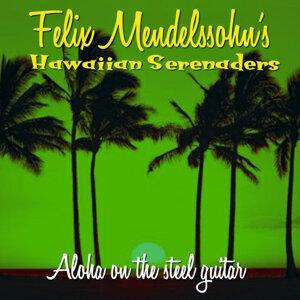 Aloha On the Steel Guitar