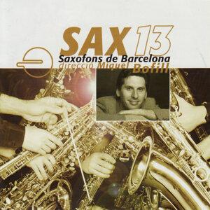 Sax13