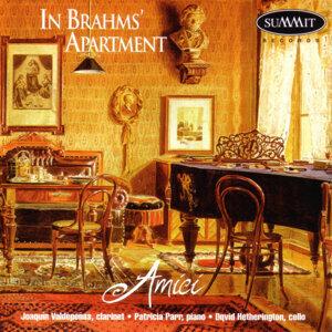 In Brahms' Apartment