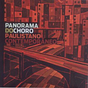 Panorama do Choro Paulistano Contemporâneo