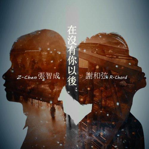 在沒有你以後 (feat. 張智成)