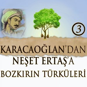 Karacaoğlan'dan Neşet Ertaş'a Bozkırın Türküleri, Vol. 3 - Traditional