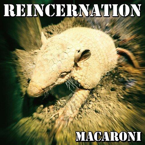 Reincernation