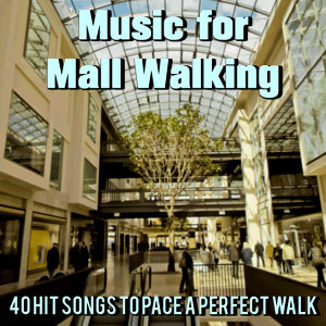 Music for Mall Walking: 40 Hit Songs to Pace a Perfect Walk